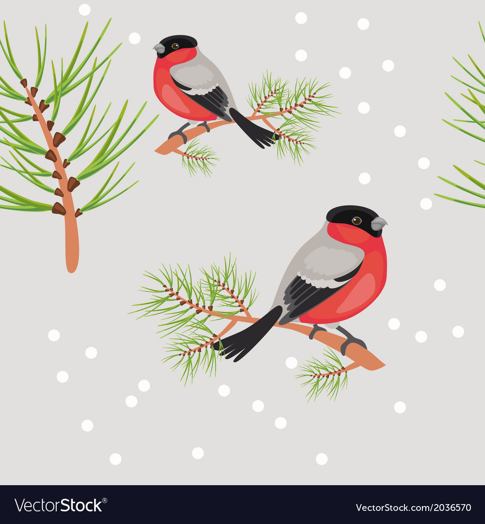 Bullfinch seamless background vector | Price: 1 Credit (USD $1)