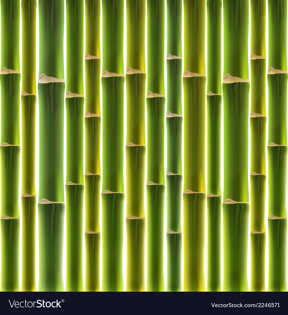 Green bamboo fence background vector | Price: 1 Credit (USD $1)