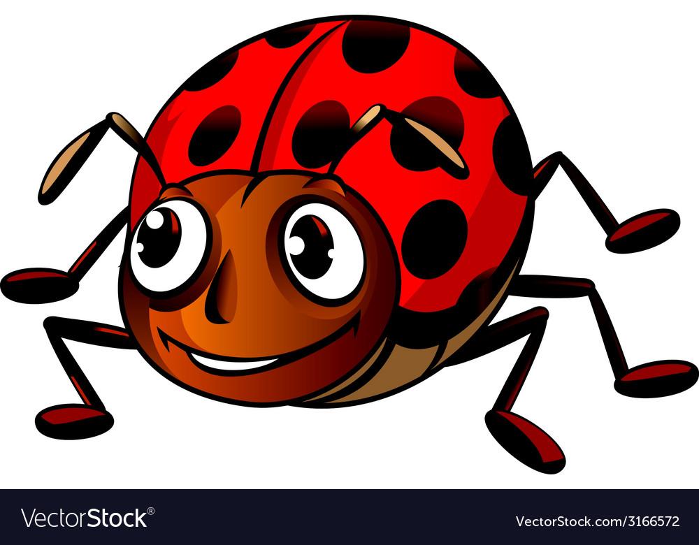 Funny ladybug vector | Price: 1 Credit (USD $1)