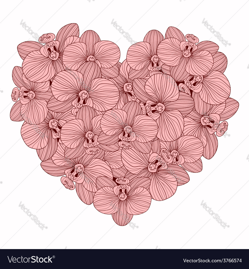 Orchid flowers heart composition vector | Price: 1 Credit (USD $1)