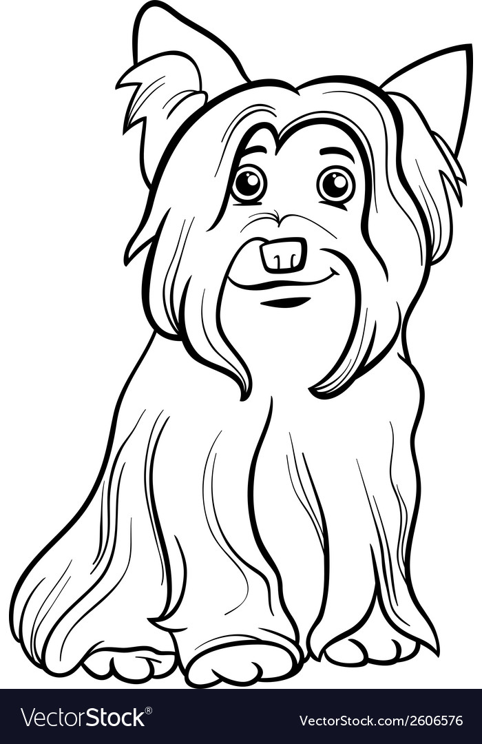 Yorkshire terrier dog coloring book vector   Price: 1 Credit (USD $1)