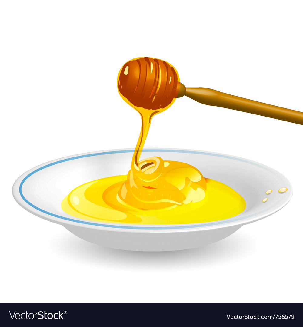 Fluid honey vector | Price: 1 Credit (USD $1)