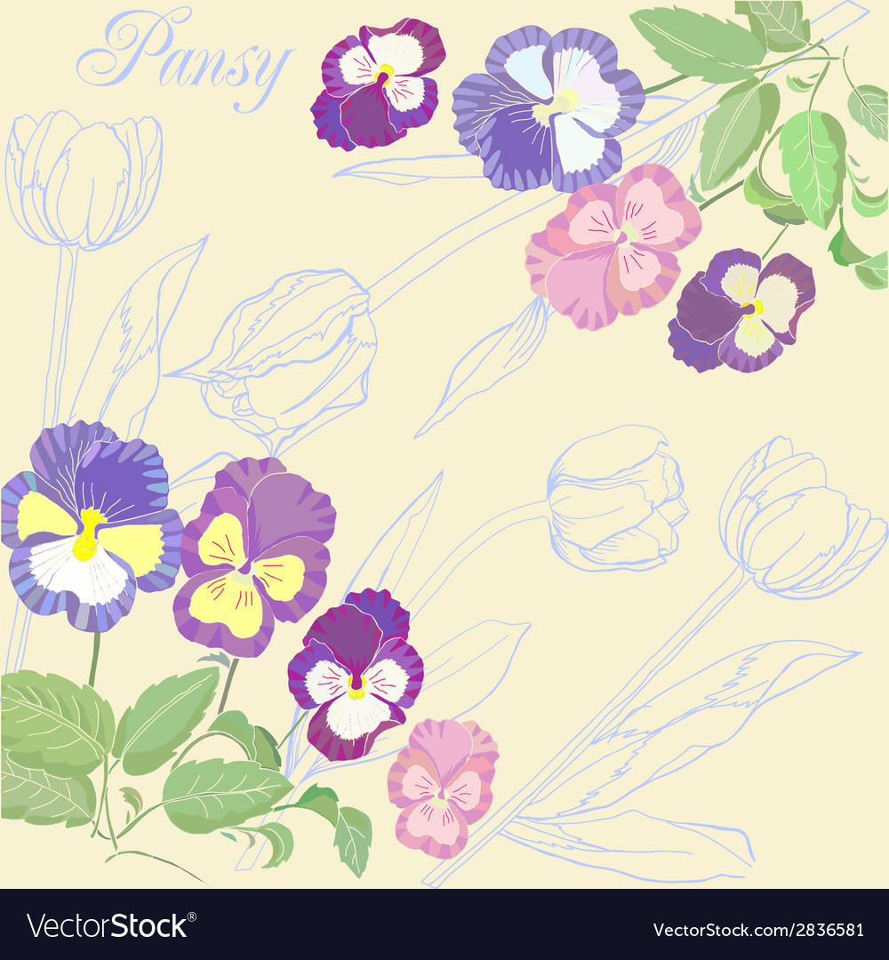Background with pansies and tulips vector | Price: 1 Credit (USD $1)