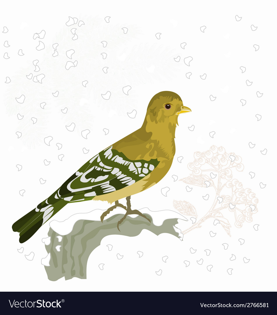 Bird and snow christmas motive vector | Price: 1 Credit (USD $1)