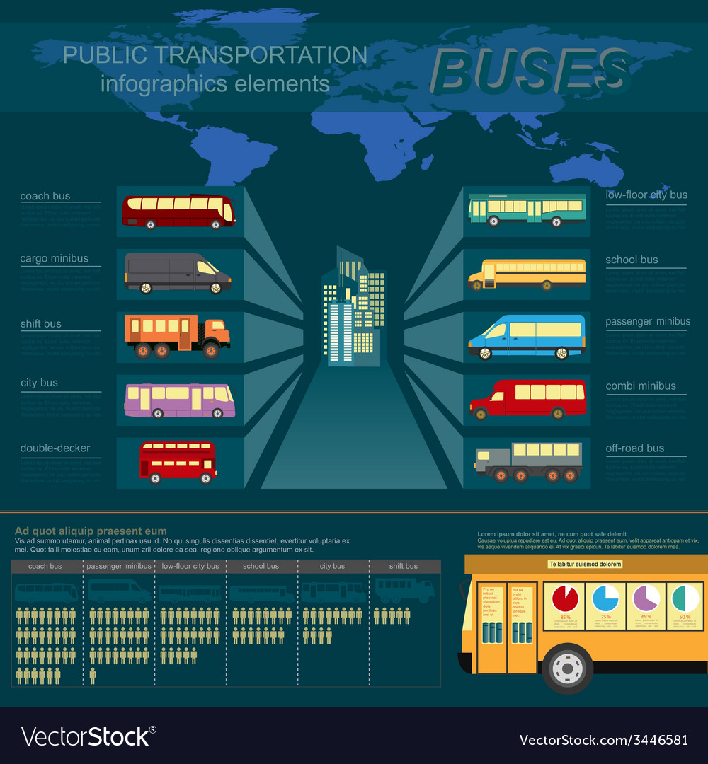 Public transportation ingographics buses vector | Price: 1 Credit (USD $1)