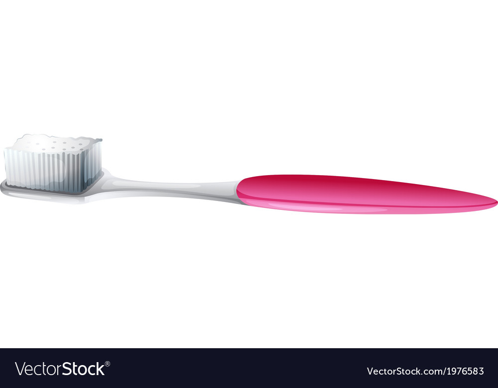 A cleaning toothbrush vector | Price: 1 Credit (USD $1)