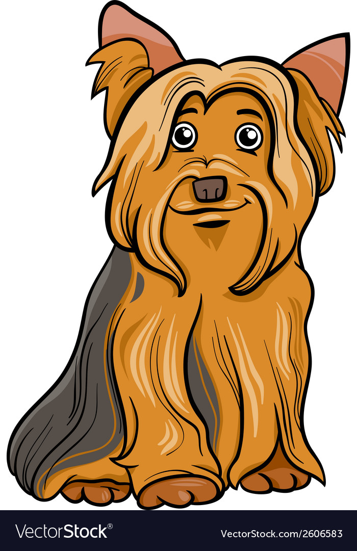 Yorkshire terrier dog cartoon vector | Price: 1 Credit (USD $1)
