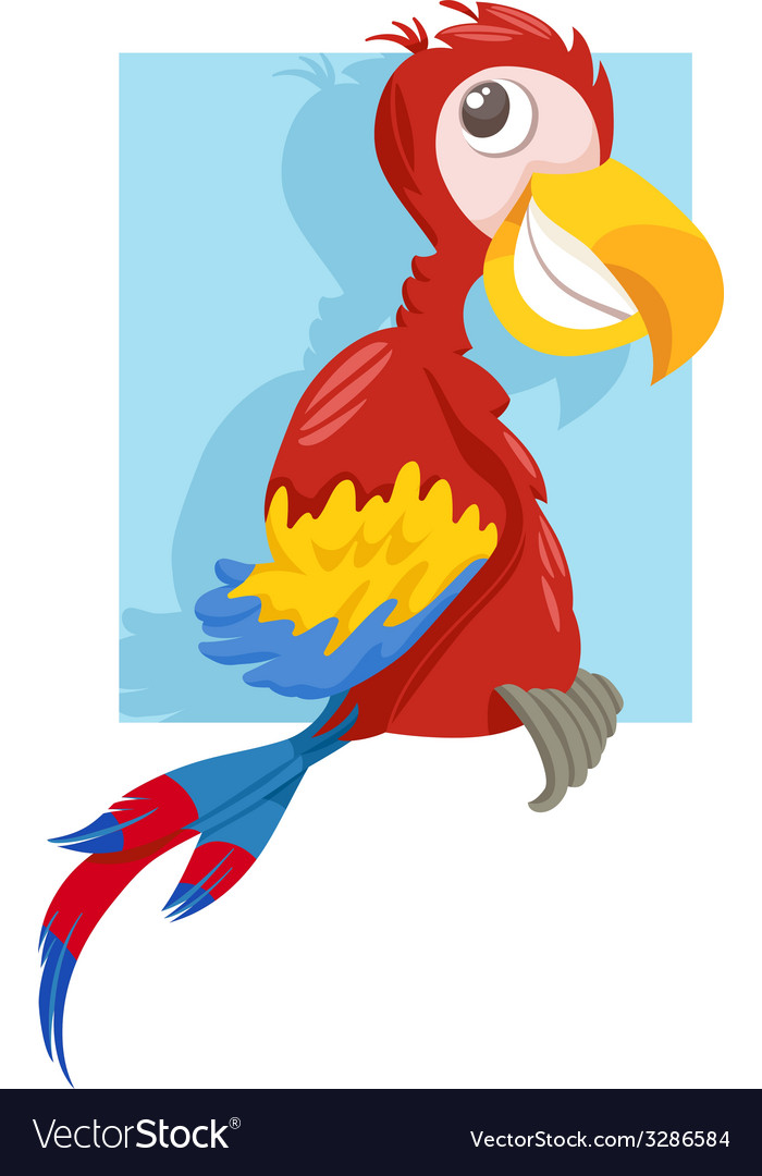 Macaw parrot cartoon vector | Price: 1 Credit (USD $1)