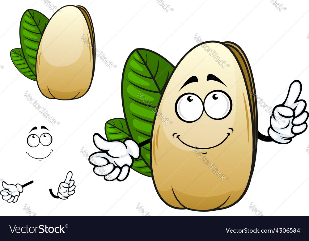 Smiling open pistachio nut cartoon character vector | Price: 1 Credit (USD $1)