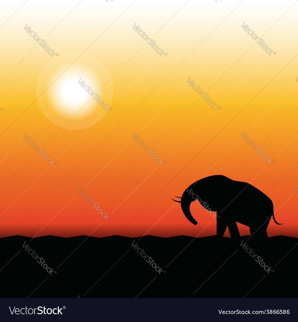 Silhouette of elephant standing in the sunset vector | Price: 1 Credit (USD $1)