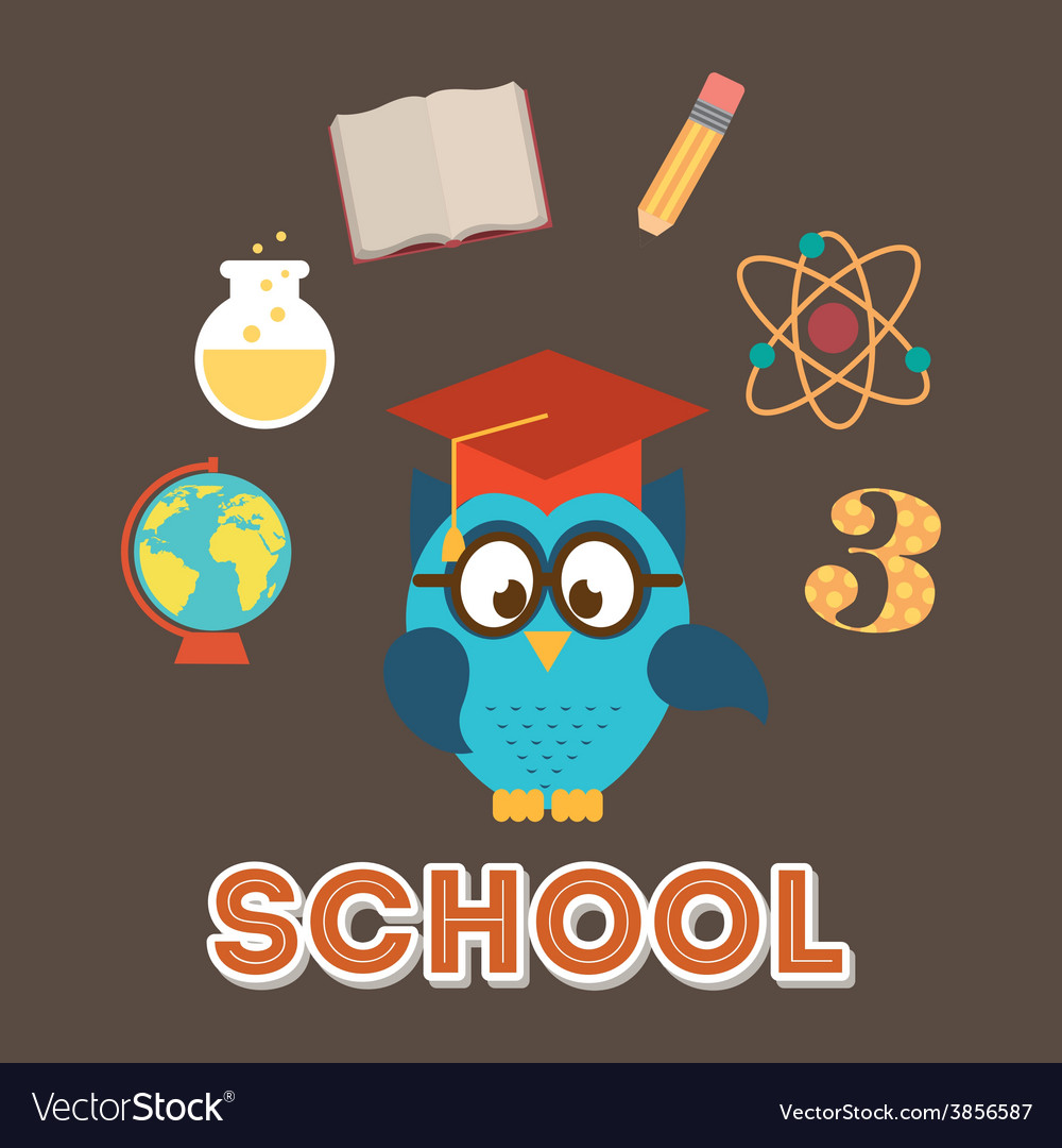 Owls school vector