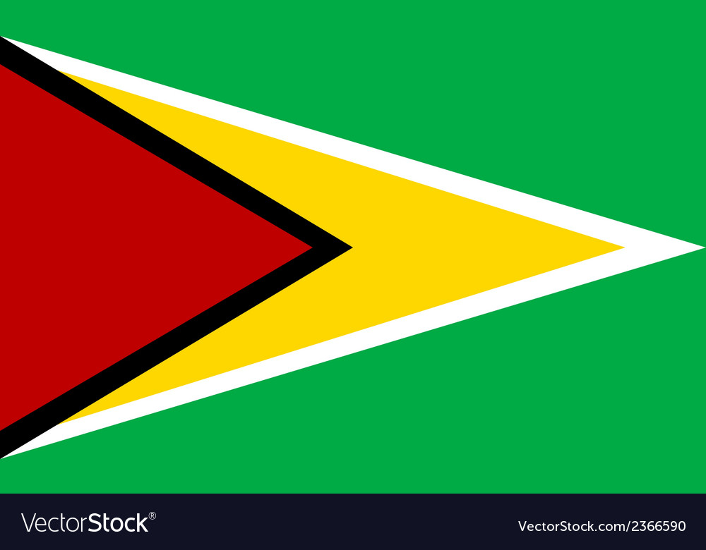 Flag of guyana vector | Price: 1 Credit (USD $1)