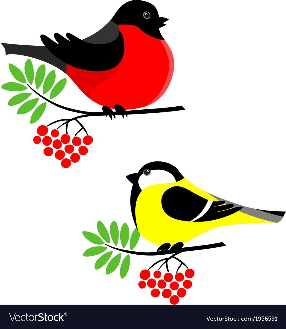 Bullfinch and tit vector | Price: 1 Credit (USD $1)