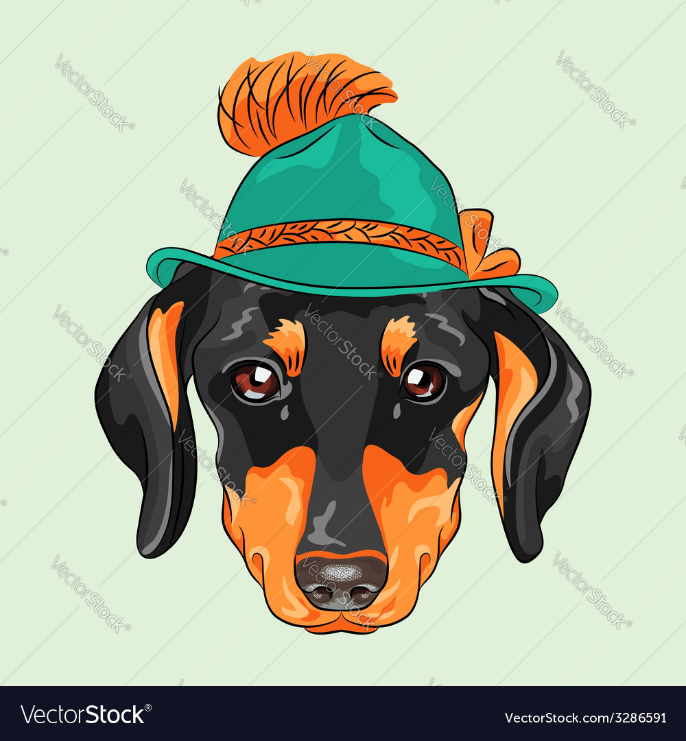 Hipster dog dachshund vector | Price: 1 Credit (USD $1)