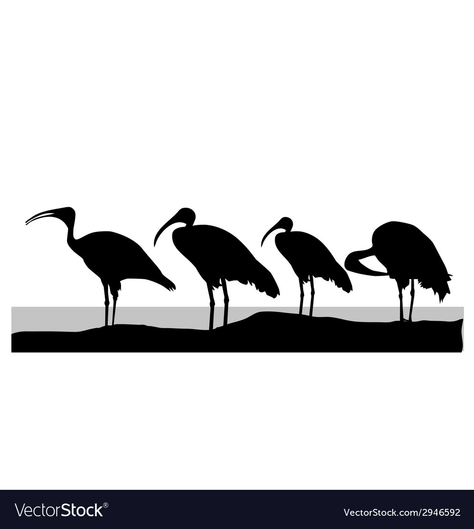 Stork silhouette vector | Price: 1 Credit (USD $1)
