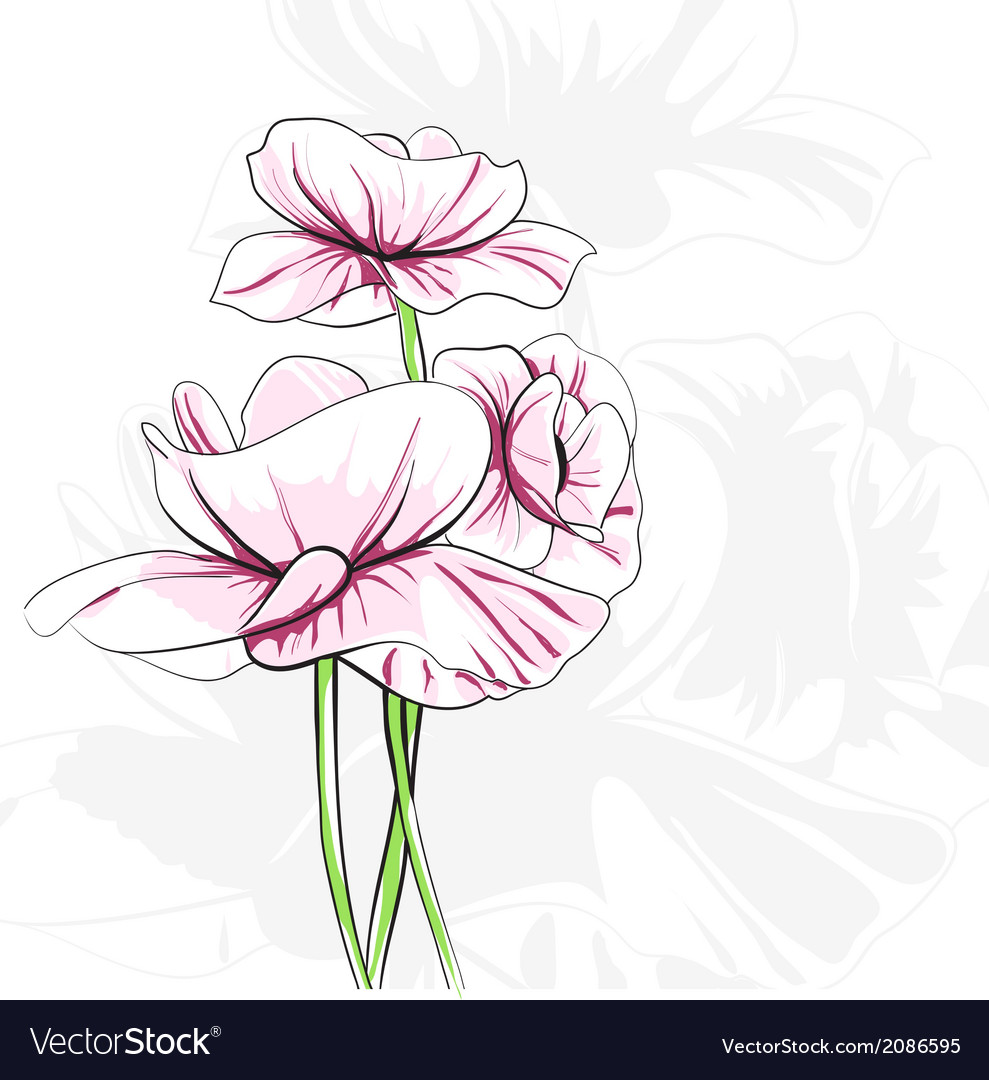 Abstract poppies vector | Price: 1 Credit (USD $1)