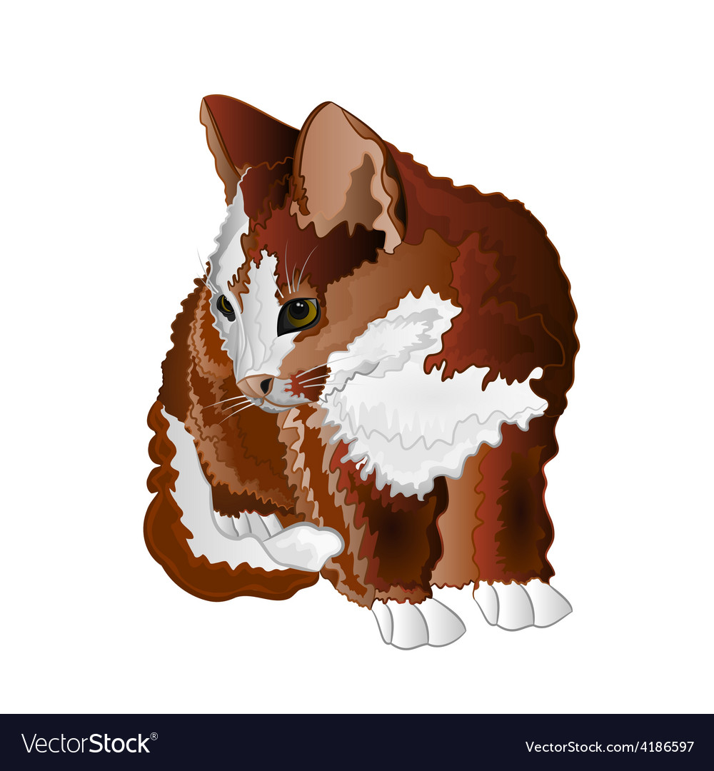 Small kitten color sitting cute feline vector | Price: 1 Credit (USD $1)