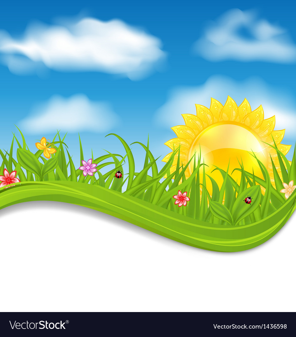 Summer card sky cloud sun grass flower butterfly vector | Price: 1 Credit (USD $1)