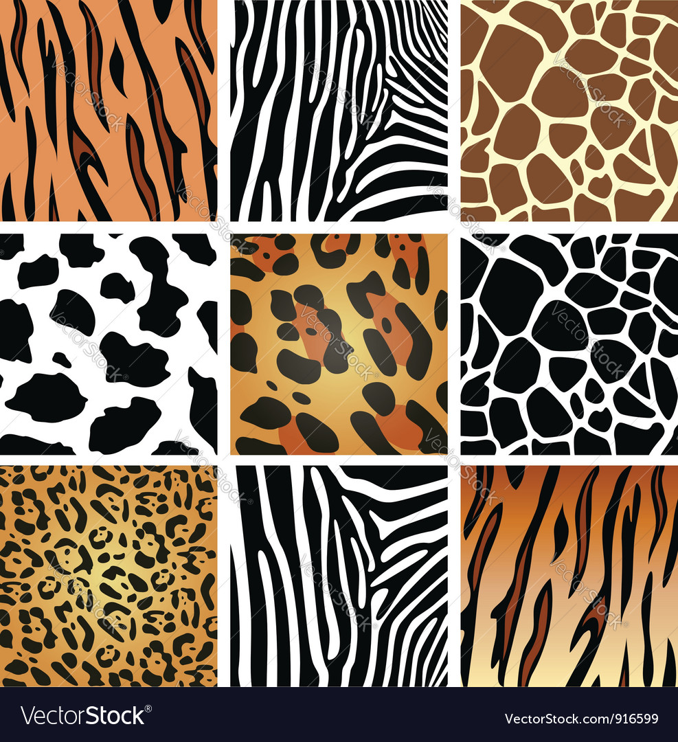 Animal skin textures vector | Price: 1 Credit (USD $1)