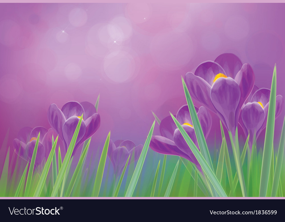 Flowers violet vector | Price: 1 Credit (USD $1)