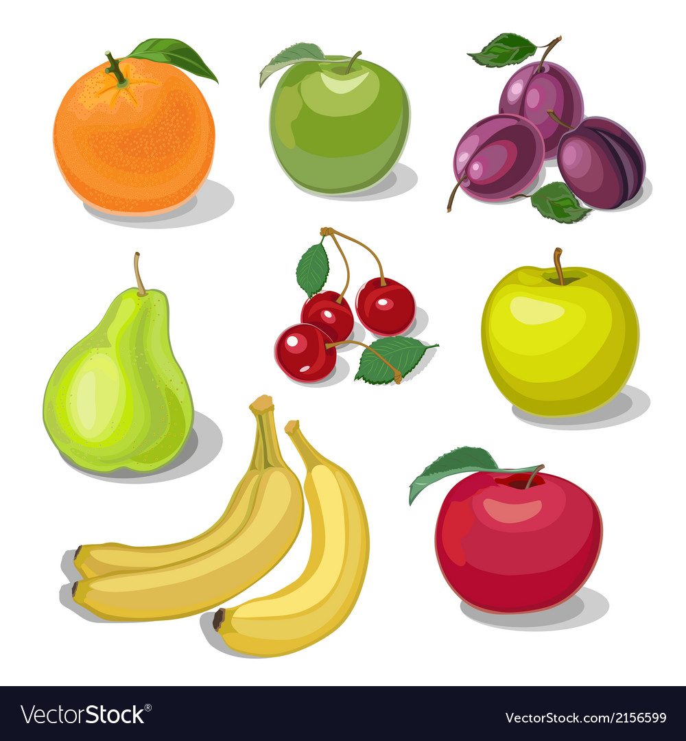 Set fruit vector | Price: 1 Credit (USD $1)