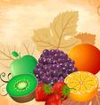 Fruit still life vector