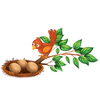 A bird watching the eggs vector