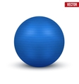 Classic blue fitball vector
