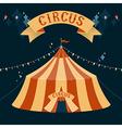 Circus chapiteau vector