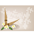 Pan flute plumeria flower background vector