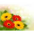 Nature background with colorful beautiful flowers vector