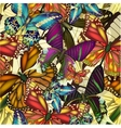 Seamless pattern colorful butterflies eps10 vector