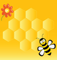 Cute bee with honeycombs vector