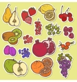 Fruits and berries sketch stickers colored vector