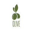 Grunge olive design template vector