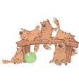 Cats on a bench cartoon vector