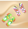 Colored beach slippers the sandy background vector