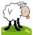 Cartoon sheep sticking out his tongue vector