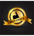 Best choice label with ribbon vector