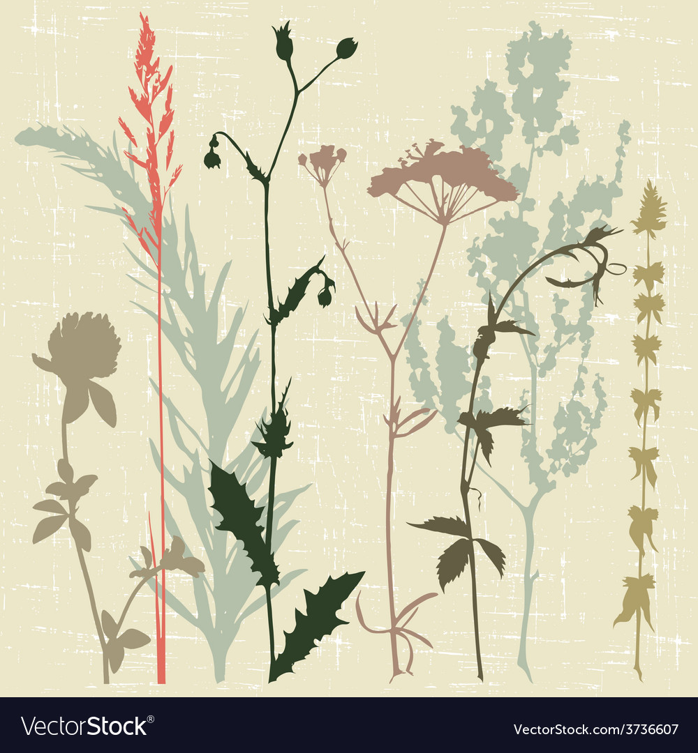 Motley grass vector | Price: 1 Credit (USD $1)