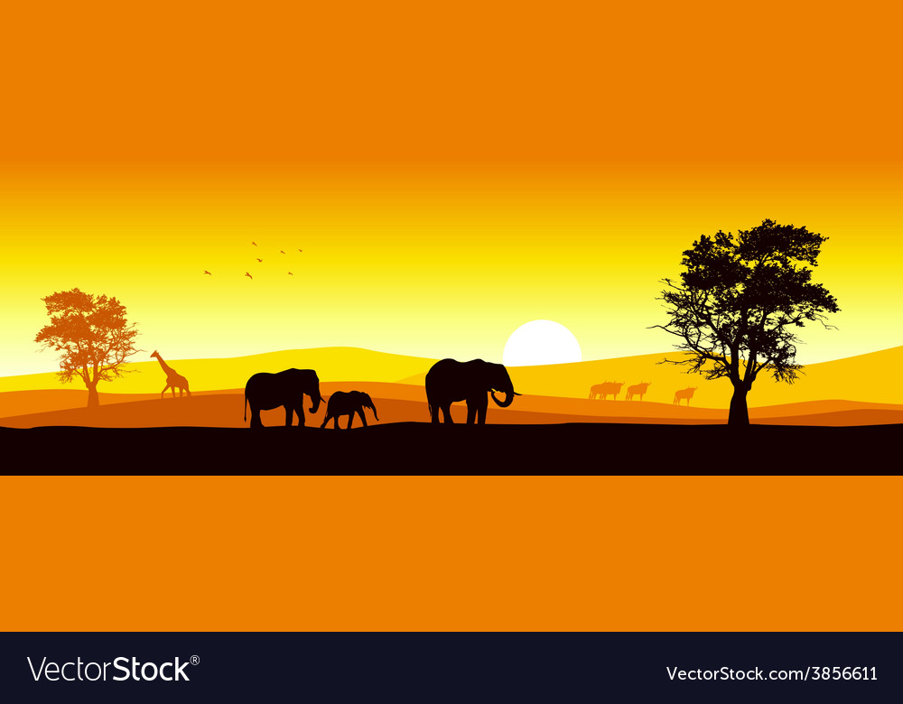 Safari in africa vector | Price: 1 Credit (USD $1)