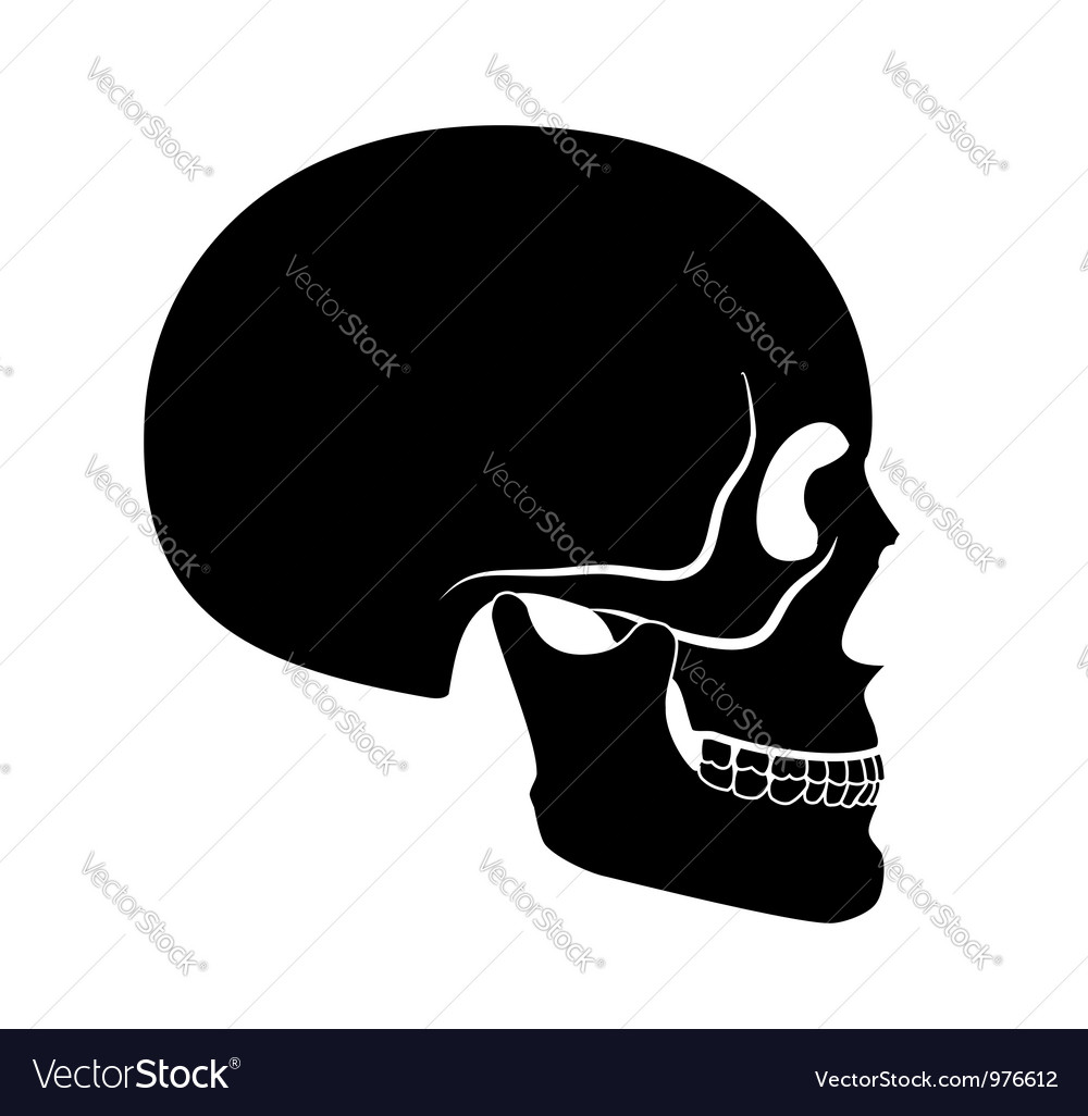 Black skull vector | Price: 1 Credit (USD $1)