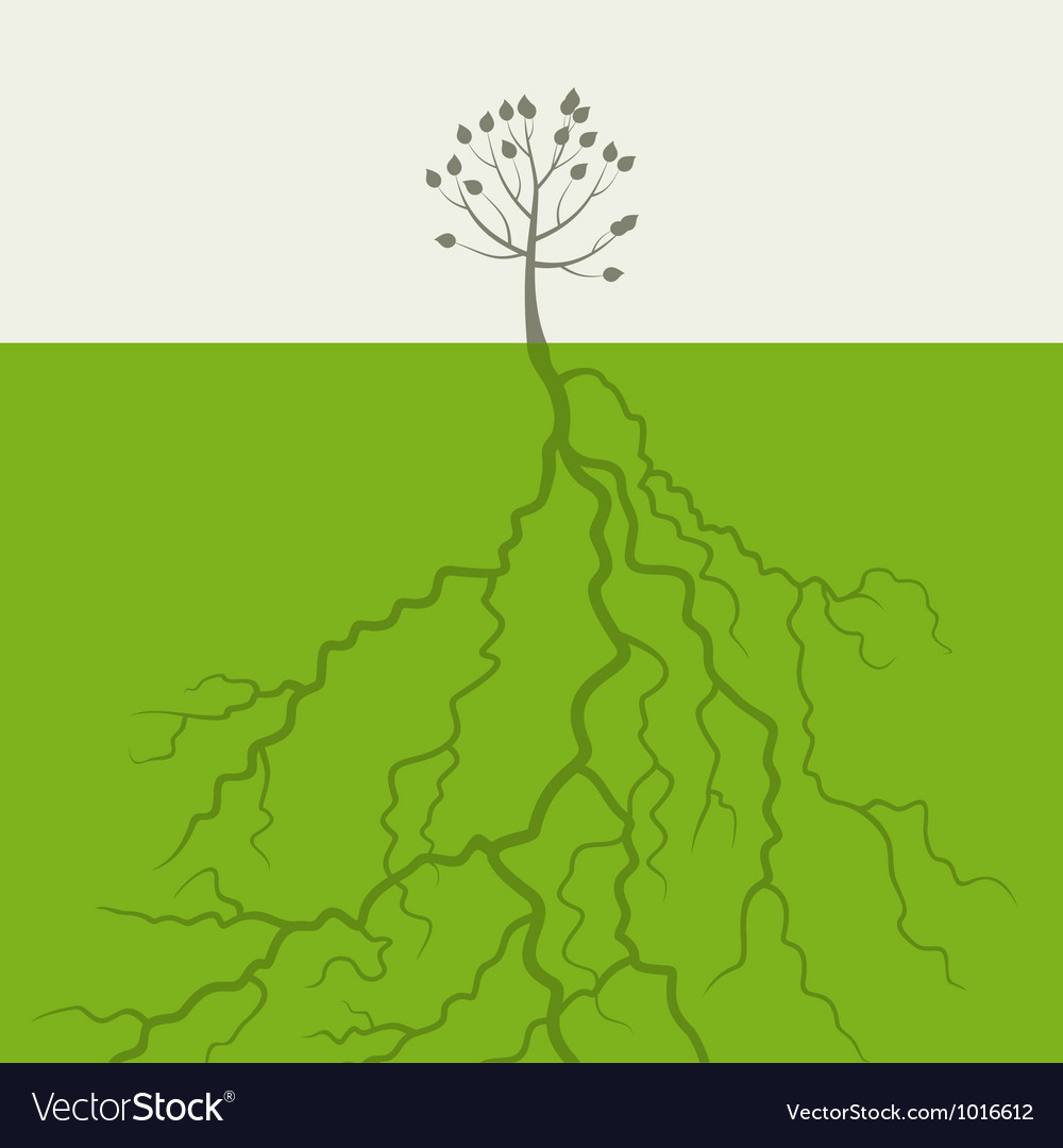 Tree with a root vector | Price: 1 Credit (USD $1)