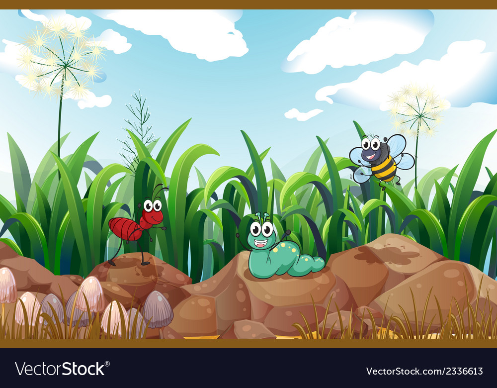 Insects above the rocks vector | Price: 3 Credit (USD $3)
