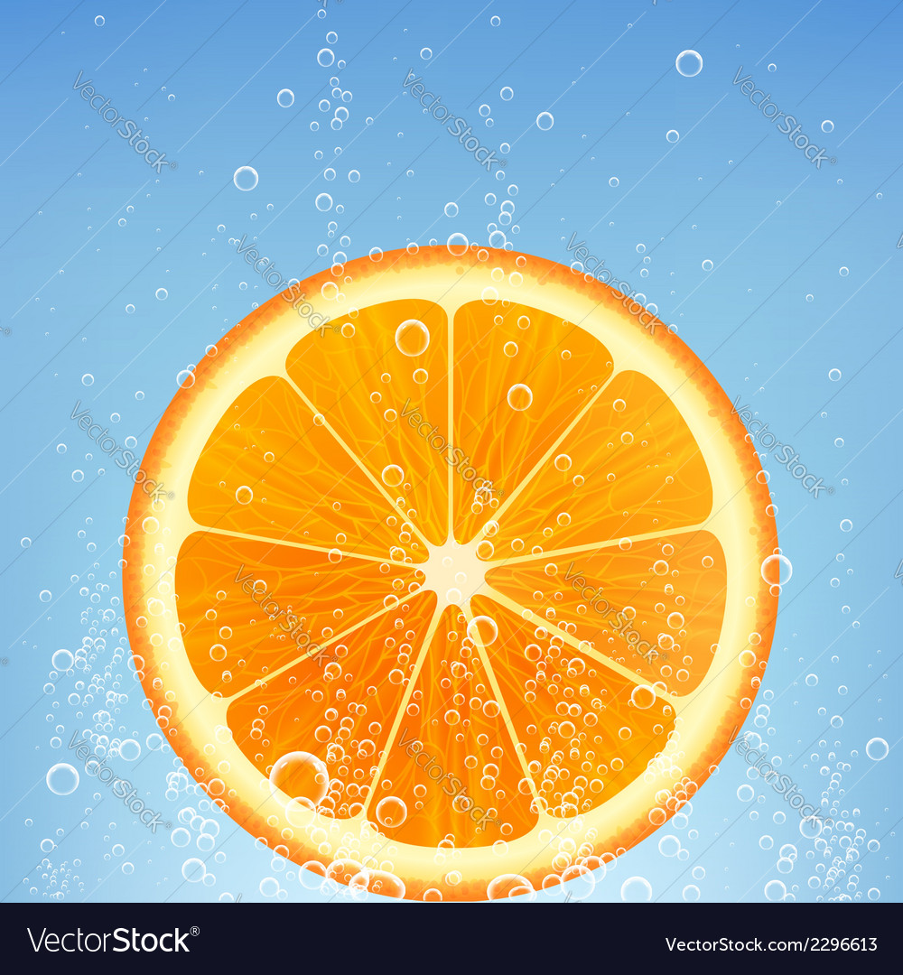 Orange in water vector | Price: 1 Credit (USD $1)