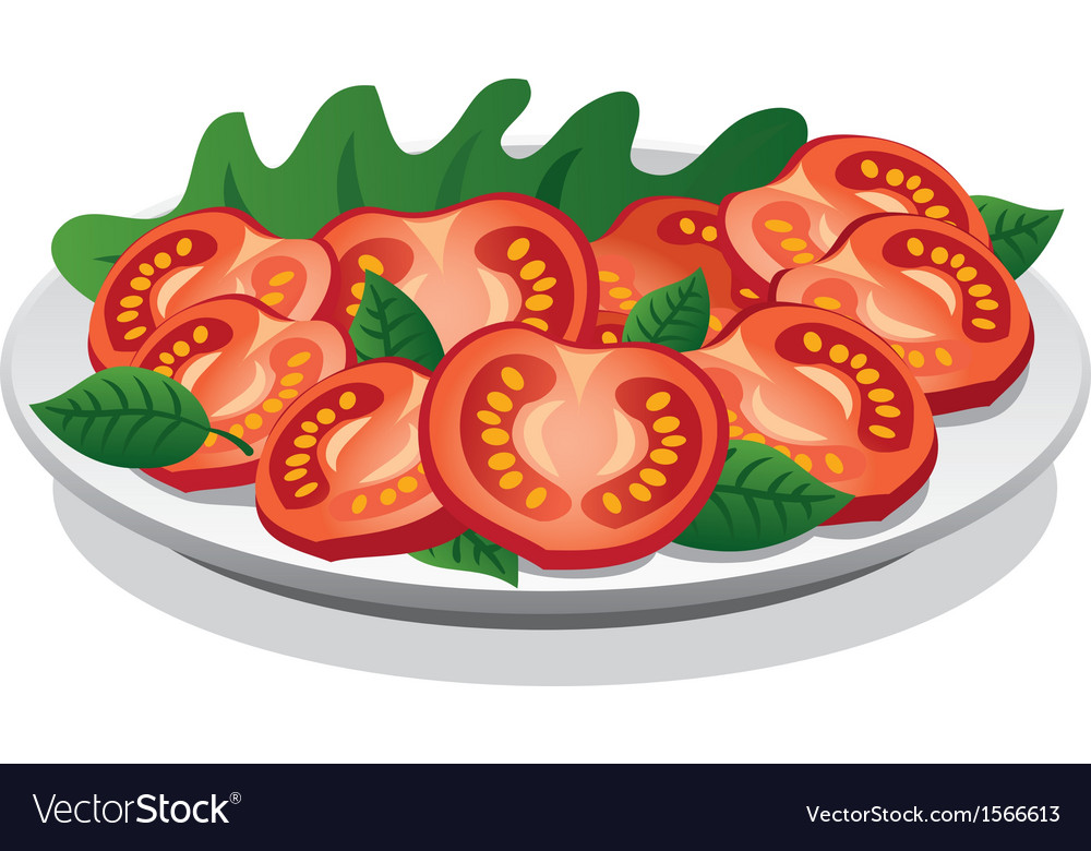 Tomato salad vector | Price: 1 Credit (USD $1)