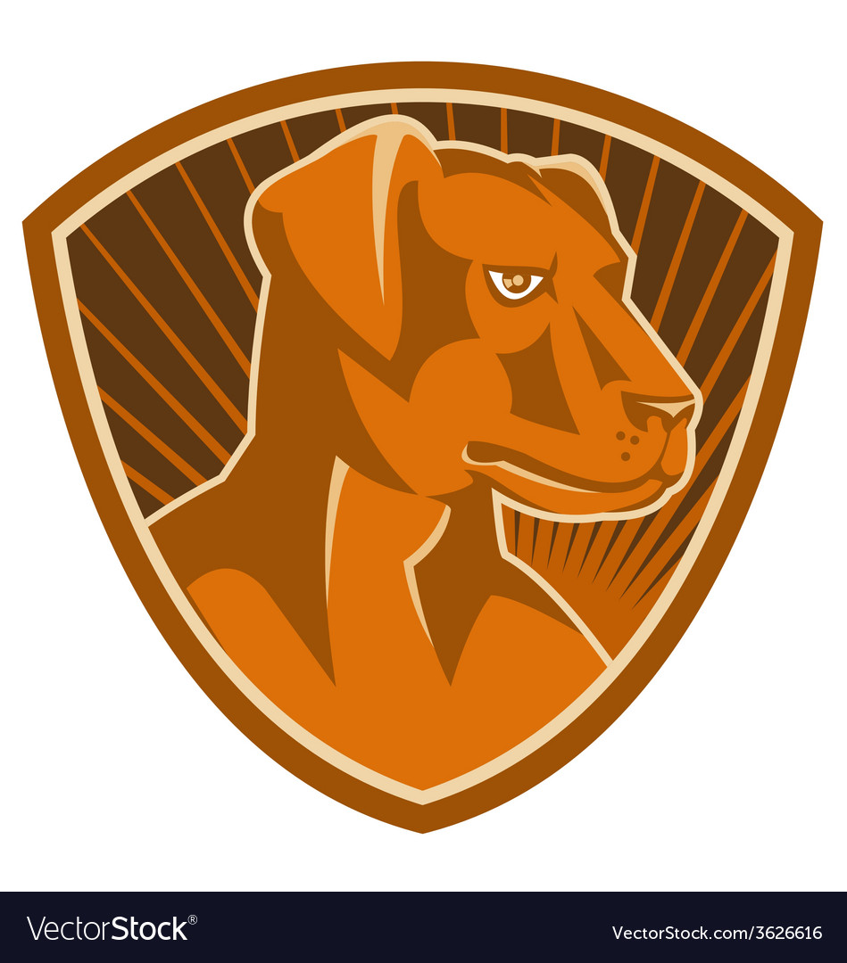 Sheepdog border collie shield retro vector | Price: 1 Credit (USD $1)