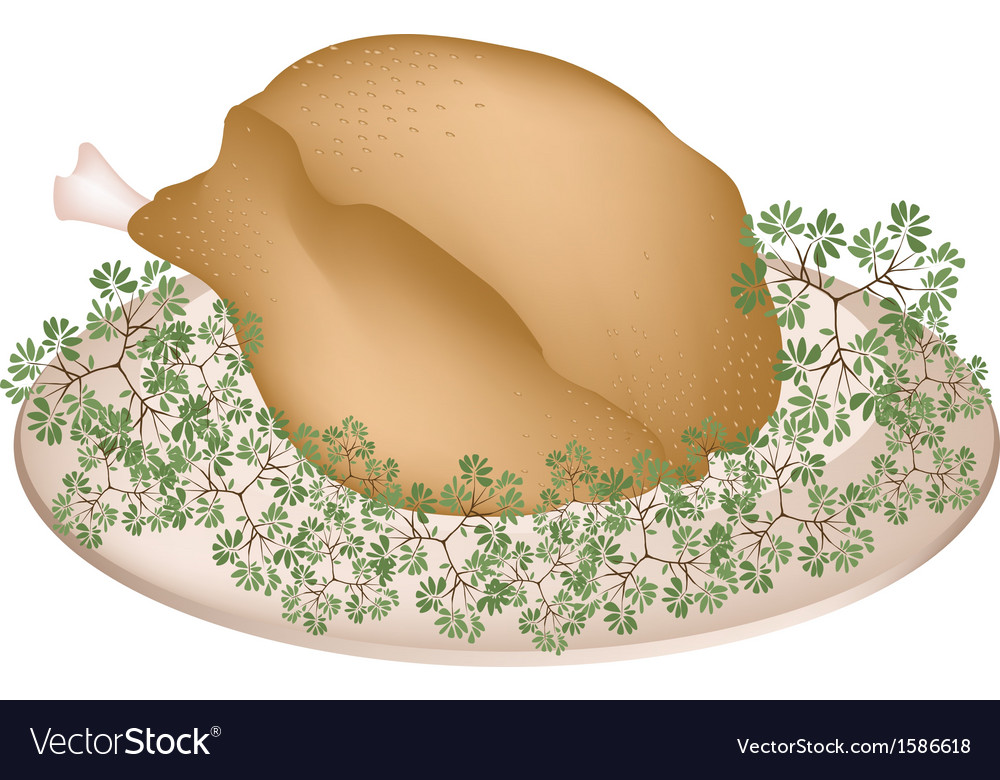 A plate of delicious roast turkey and herbs vector | Price: 1 Credit (USD $1)