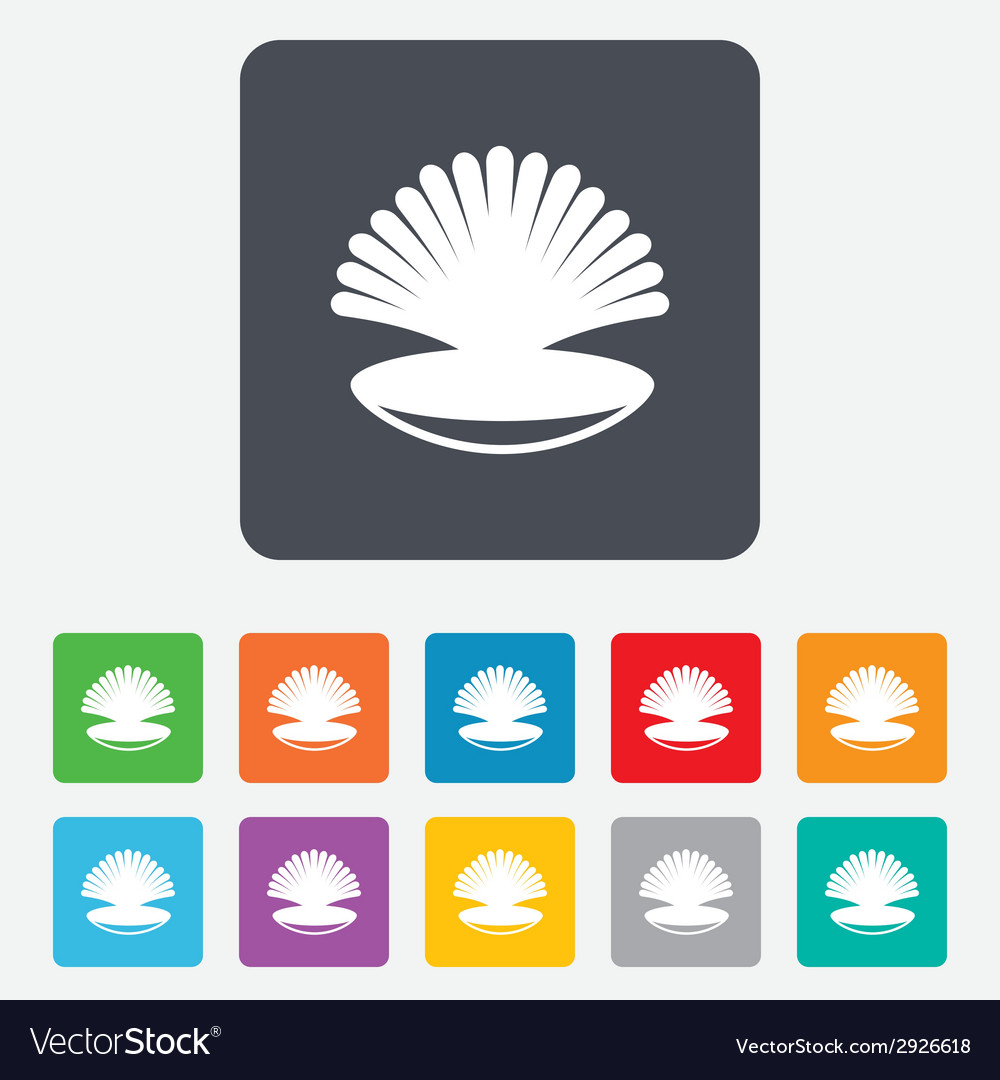 Sea shell sign icon conch symbol travel icon vector | Price: 1 Credit (USD $1)