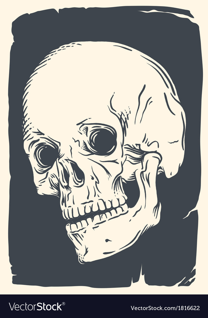 Isolated skull on vintage broken pape vector | Price: 1 Credit (USD $1)